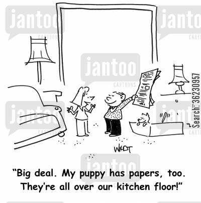 house training cartoon humor: Big deal. My puppy has papers, too. They're all over our kitchen floor!