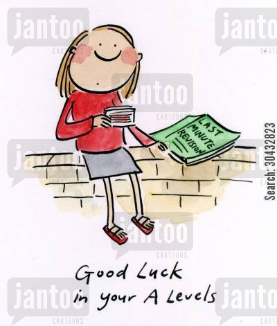 a level cartoon humor: Good luck in your A Levels.