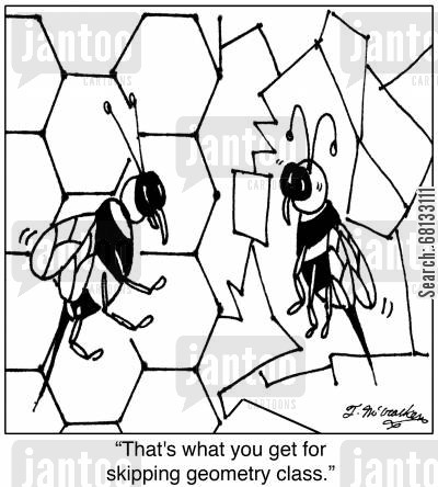 skip cartoon humor:  'That's what you get for skipping geometry class.'