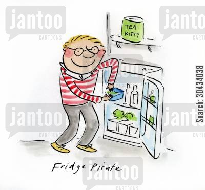 student kitchen cartoon humor: Fridge Pirate