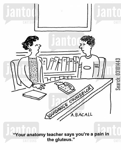 guidance counsellor cartoon humor: 'Your anatomy teacher says you're a pain in the gluteus.'