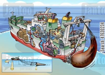 fishing boat cartoon humor: Cutaway drawing of pelagic trawler.