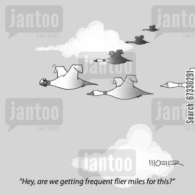 migrations cartoon humor: 'Hey, are we getting frequent flier miles for this?'