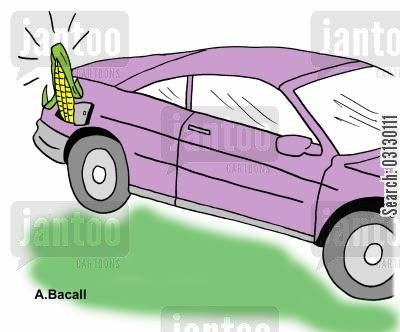 corn on the cob cartoon humor: Bio Fuels.