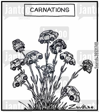 flora cartoon humor: Carnations.