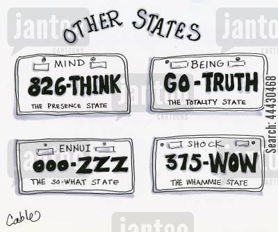 number plate cartoon humor: Auto license plates describing states of mind.