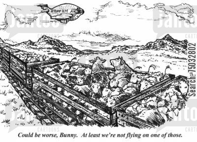 crowded cartoon humor: 'Could be worse, Bunny. At least we're not flying on one of those.'