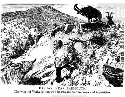 idyllic victorian country cartoon humor: Bashan, Near Barmouth