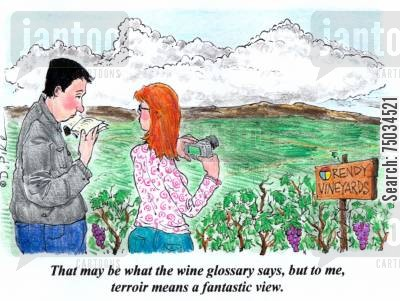 guide books cartoon humor: 'That may be what the wine glossary says, but to me, terroir means a fantatic view.'