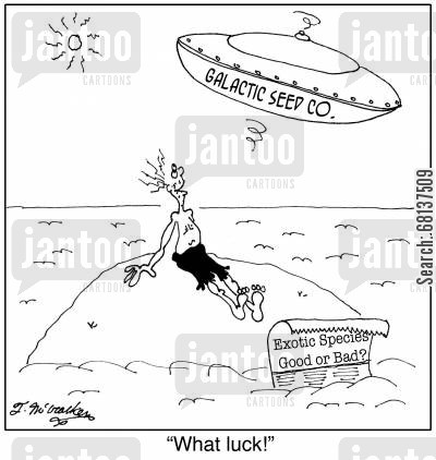 exotic species cartoon humor: 'What luck!'