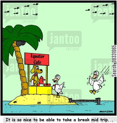 palmtree cartoon humor: 'It is so nice to be able to take a break mid trip...'