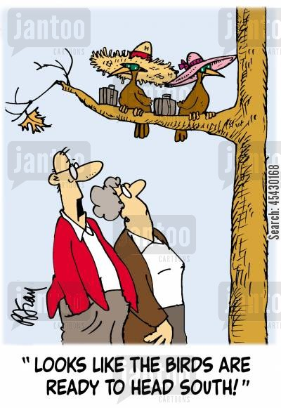 fly south cartoon humor: 'Looks like the birds are ready to fly south!'