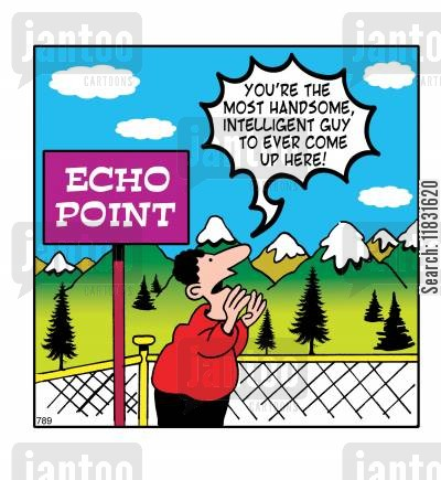 echo cartoon humor: Echo Point.