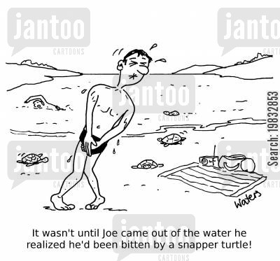 holidaying cartoon humor: It wasn't until Joe came out of the water he realized he'd been bitten by a snapper turtle!