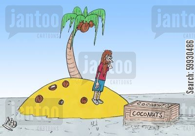 coconut cartoon humor: Castaway stranded on a desert island with only one coconut palm for survival finds a box of coconuts