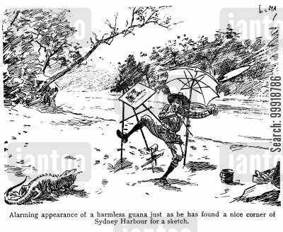 colonialist cartoon humor: Alarming appearance of a harmless guana.