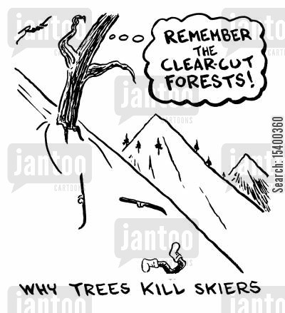 sking cartoon humor: 'Why trees kill skiers'