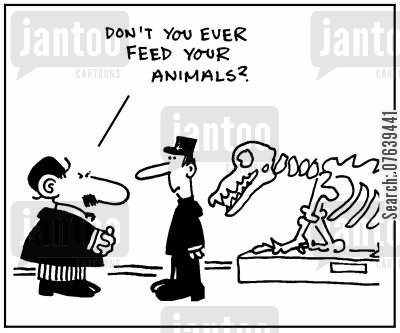 dinosaur bones cartoon humor: 'Don't you ever feed your animals?'