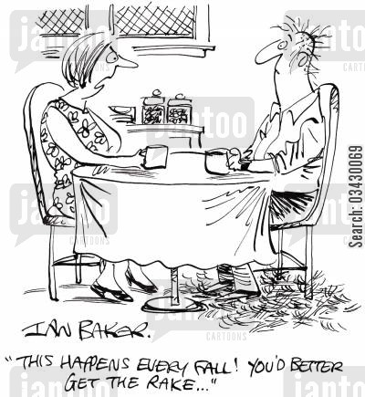 falling hair cartoon humor: 'This happens every fall! You'd better get the rake...'