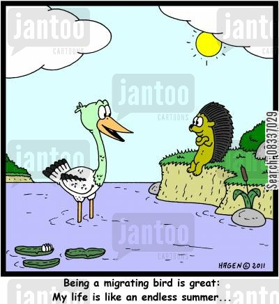 sunny weather cartoon humor: 'Being a migrating bird is great: My life is like an endless summer...'