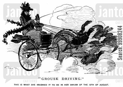 grouses cartoon humor: Grouse Driving.