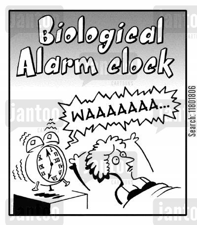 broody woman cartoon humor: Biological Alarm Clock.