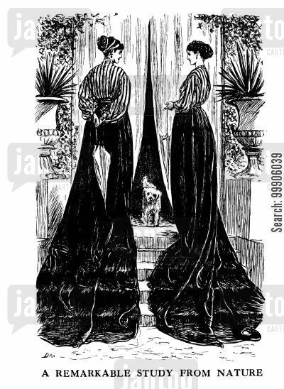 victorian fashion cartoon humor: Women's Fashions - A Study From Nature