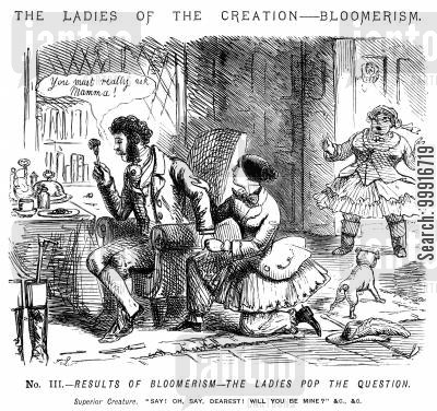 bloomerism cartoon humor: The Ladies of the Creation - Bloomerism. - No. III. Results of Bloomerism - The ladies pop the question.