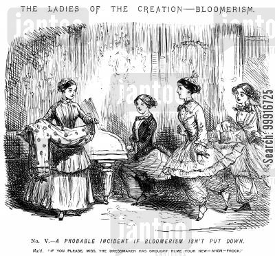 dressmaker cartoon humor: The Ladies of the Creation - Bloomerism. - No. V. - A probable incident if Bloomerism isn't put down.