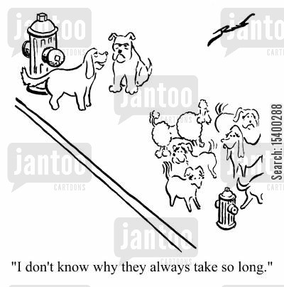 ladies cartoon humor: I don't know why they take so long