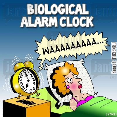 career mum cartoon humor: Biological alarm clock!