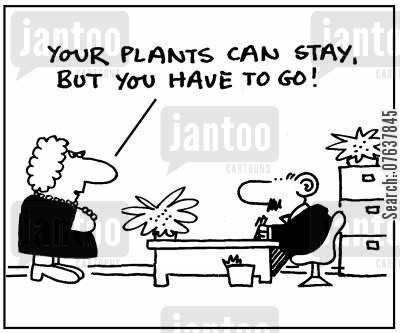 office decoration cartoon humor: 'Your plants can stay, but you have to go.'