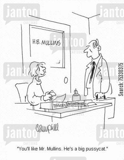 cat allergy cartoon humor: 'You'll like Mr. Mullins. He's a big pussycat.'