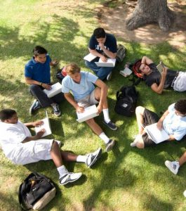 Group of Loyola High School students working on homework together outside on the grass in the shade of a large tree.