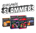Save 75¢ off ONE (1) Go Gourmet® Slammers Fruit and Veggie Snack