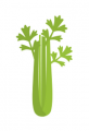 $0.10 off any brand of celery
