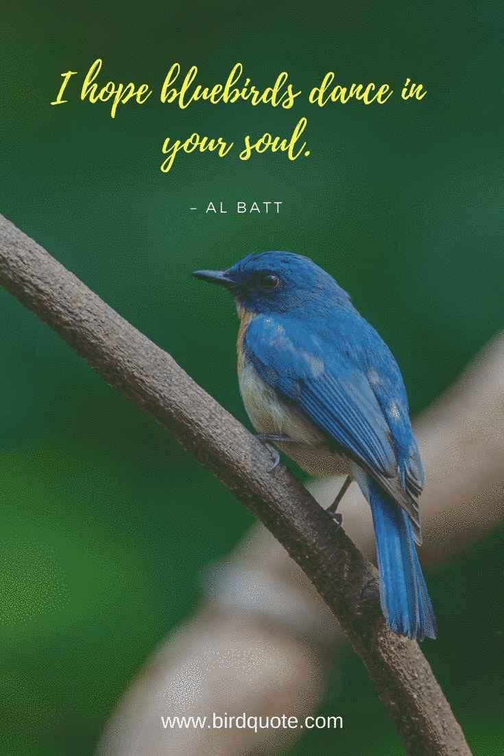 Hope Bluebirds Dance
