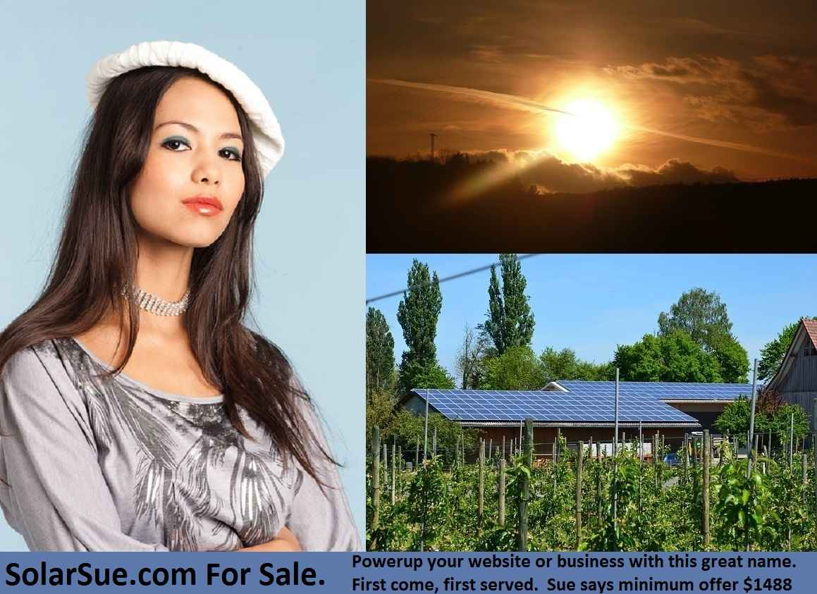 solarsue.com for sale