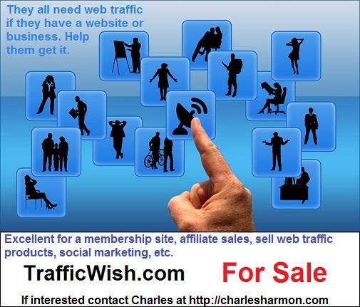 trafficwish.com for sale