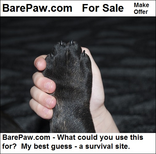 barepaw.com is for sale