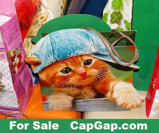 capgap.com for sale