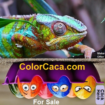 colorcaca.com for sale