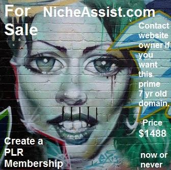 nicheassist.com for sale