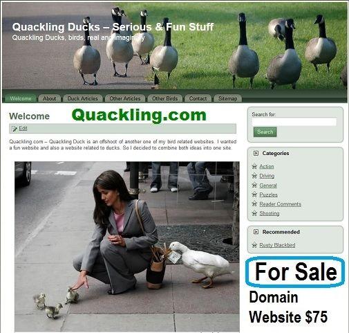 quackling.com for sale