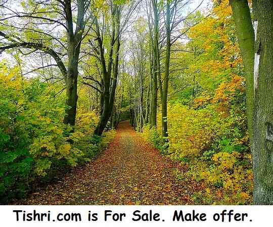 tishri.com for sale