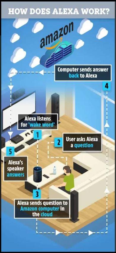 Alexa, Goodbye