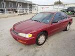 Lot: 30-101050 - 1996 Honda Accord