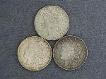 Lot: 2445 - (3) 1921 MORGAN DOLLARS