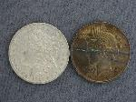 Lot: 2449 - 1921 MORGAN & 1923 PEACE DOLLARS