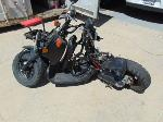 Lot: B702073 - 2013 HONDA RUCKUS MOTORCYCLE